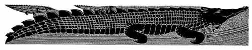 Alick Tipoti, Koedal Kazil Garr Yatharmik, Torres Strait Islander art