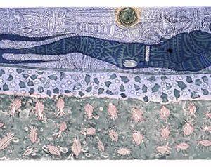 Dennis Nona, Wamadai (Plant Medicine), Torres Strait Islander art