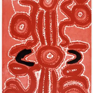 Liddy Nakamarra Nelson, Wapurtarli, Aboriginal art