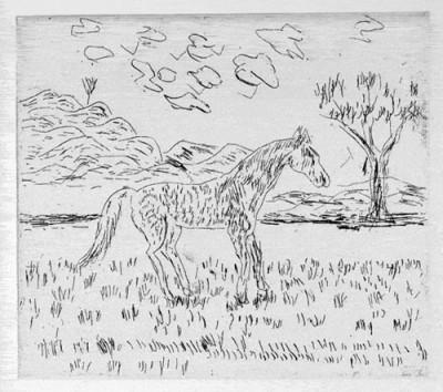 Nipper Sweeney Rogers (Janjin), Yawarta, Aboriginal art