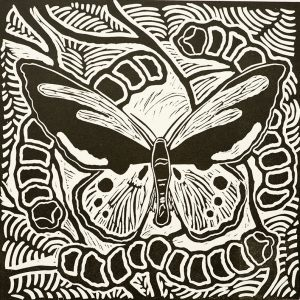 Jackie Williams, Ugly and Beautiful - Bird Wing Butterfly, Aboriginal art