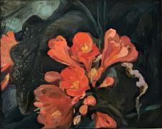 Carolyn Lockhart, Clivias II, Australian art