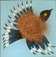 Mary Shackman, Bright Bird Nest, Australian contemporary art