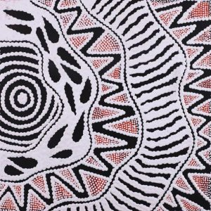 Pikilyi Jukurrpa - Vaughan Springs Dreaming, Ursula Napangardi Hudson, Aboriginal art